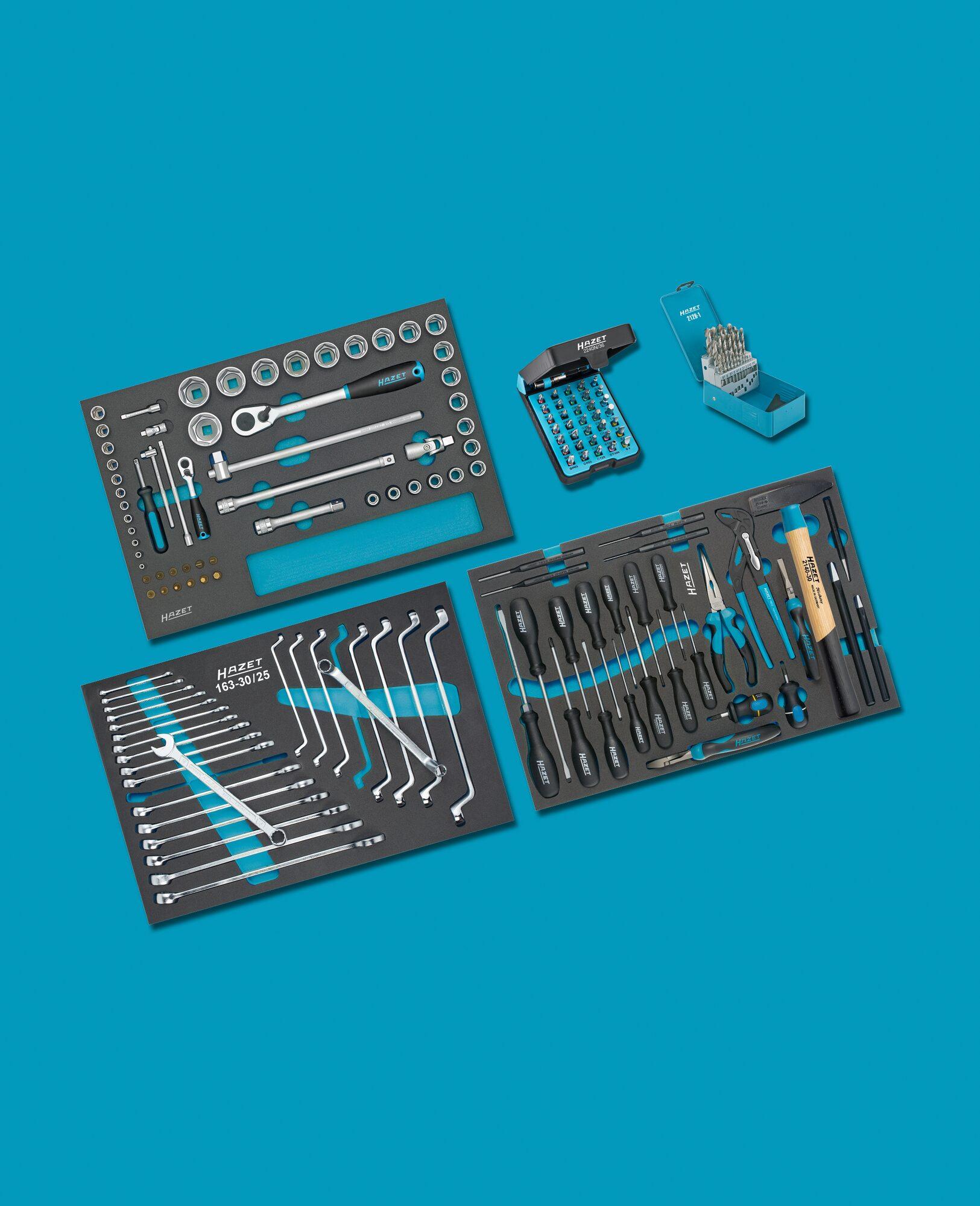 HAZET Werkzeug Sortiment 0-178/169 ∙ Anzahl Werkzeuge: 169