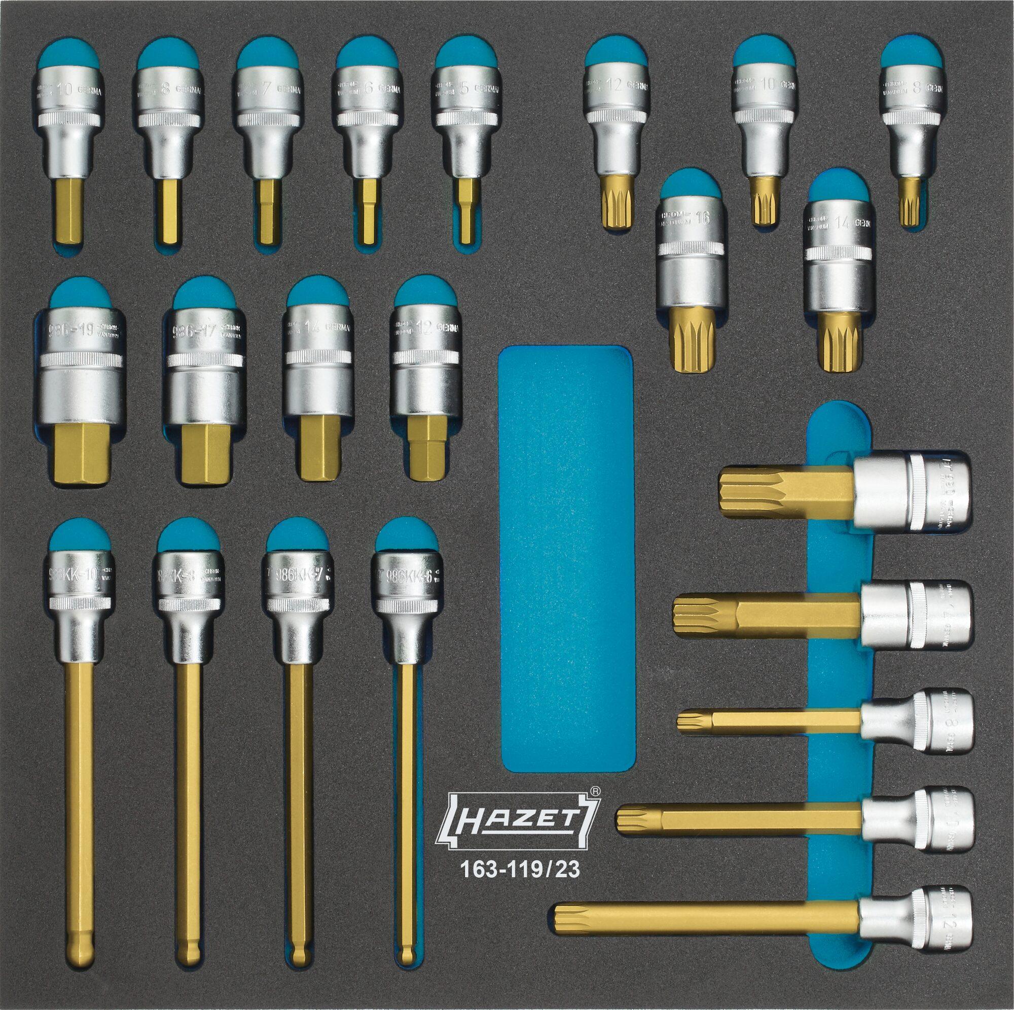 HAZET Schraubendreher-Steckschlüsseleinsatz Satz 163-119/23 ∙ Vierkant hohl 12,5 mm (1/2 Zoll) ∙ Anzahl Werkzeuge: 23