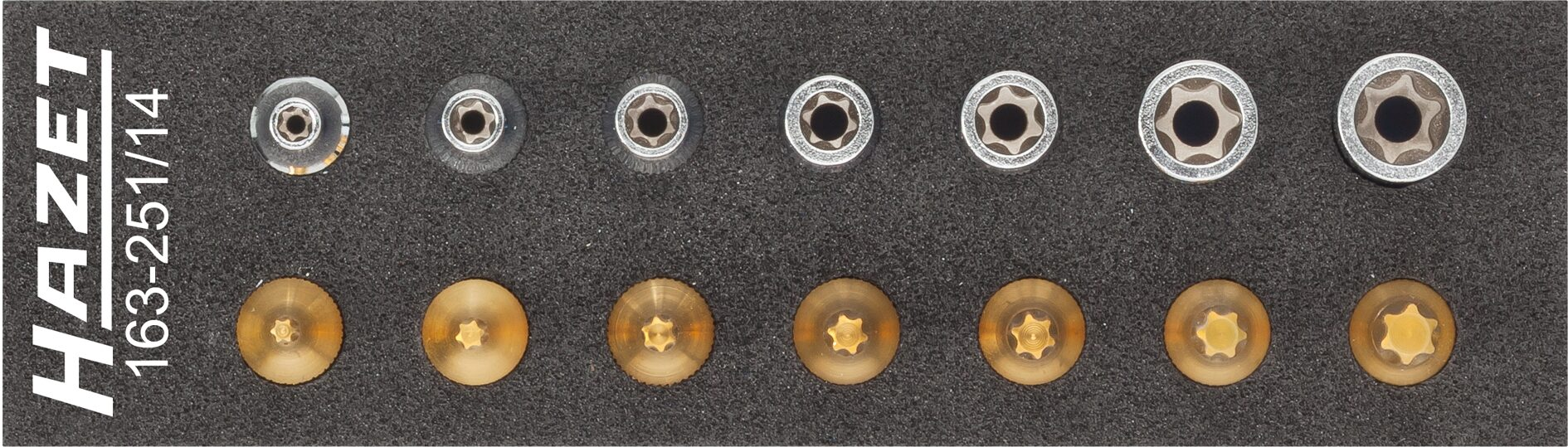 HAZET Werkzeug Satz ∙ TORX® 163-251/14 ∙ Vierkant hohl 6,3 mm (1/4 Zoll) ∙ Außen TORX® Profil, Innen TORX® Profil